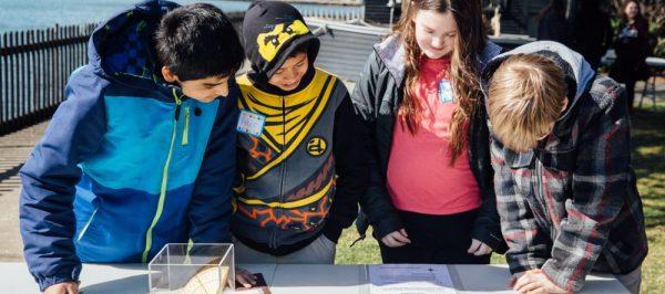 Children Investigating Compass Exercise | Education