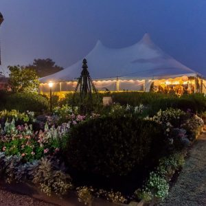 Tent on the seaside lawn at dusk - The House of the Seven Gables