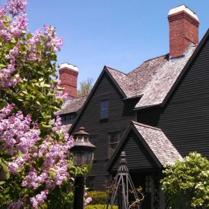 Lilacs in bloom near The House of the Seven Gables