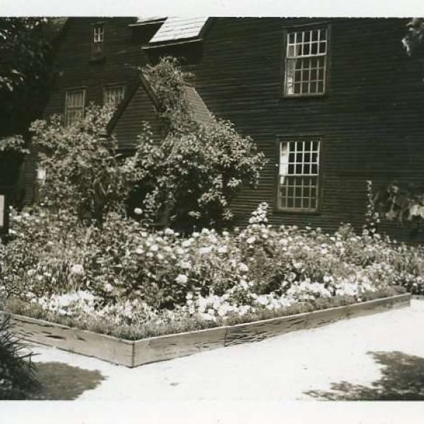 Black and white photograph of gardens featuring raised beds and vines.